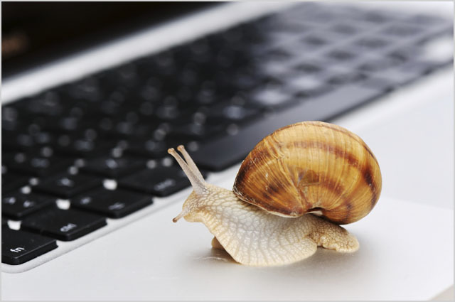 Slow connection as a snail